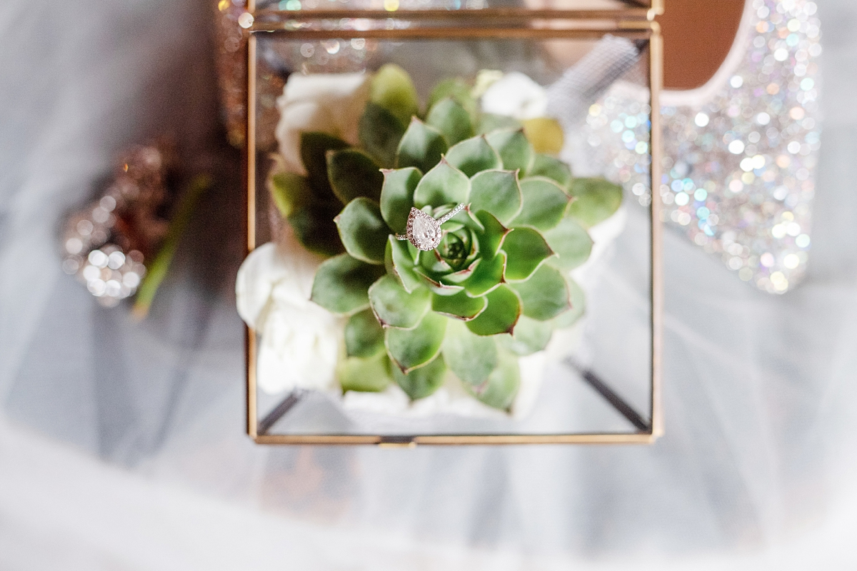 engagement ring in a succulent plant