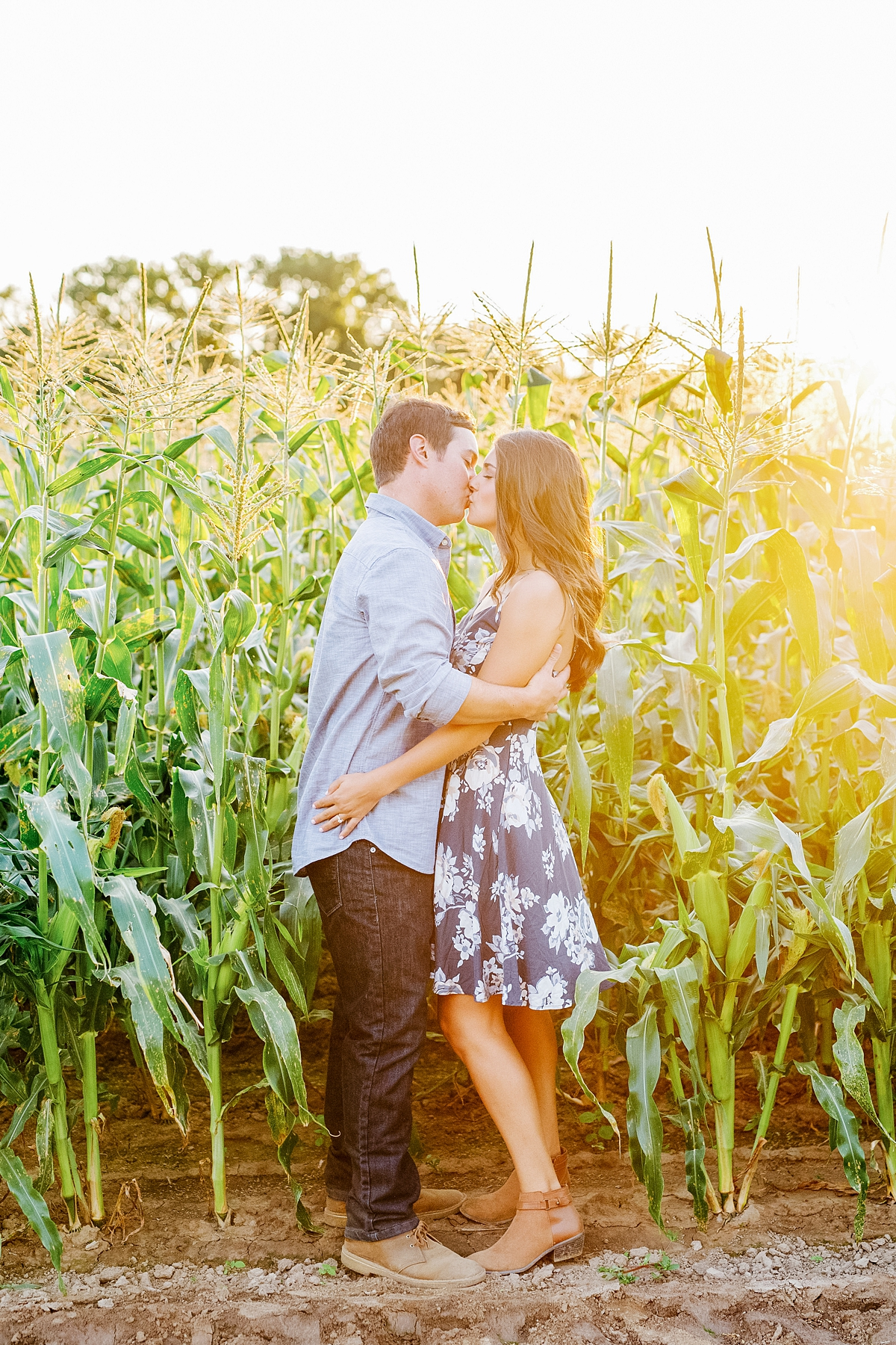 engagement session in a cornfield