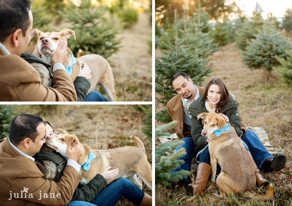 winter family portraits in connecticut