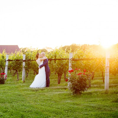 Wedding at Jonathan Edwards Winery: 